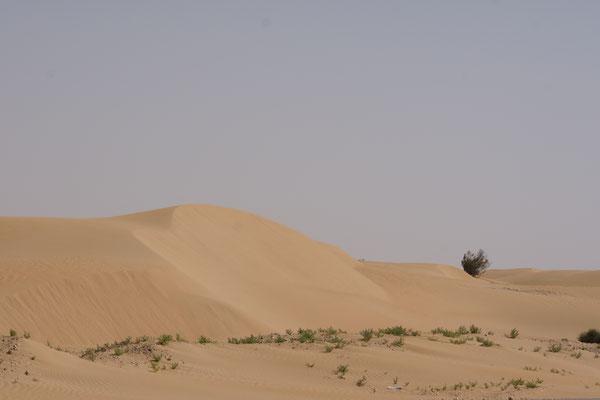 Grosse Sanddünen auf dem Weg nach Laayoune