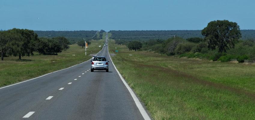 Schnurgerade geht es durchs Tiefland nach Santiago del Estero