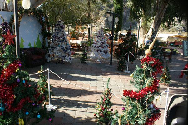 Weihnachtsbaum gefällig