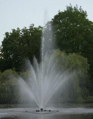 Es springt der Brunnen im Teich