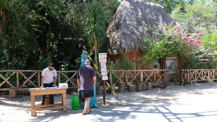 Endlich eine Cenote, die wir besuchen dürfen, aber natürlich nur nach dem Fiebermessen und mit Maske