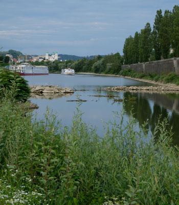 In Passau auf dem Stellplatz neben einem Seitenarm der Donau