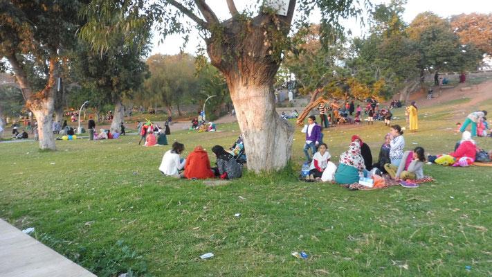 Sonntags-Picknick