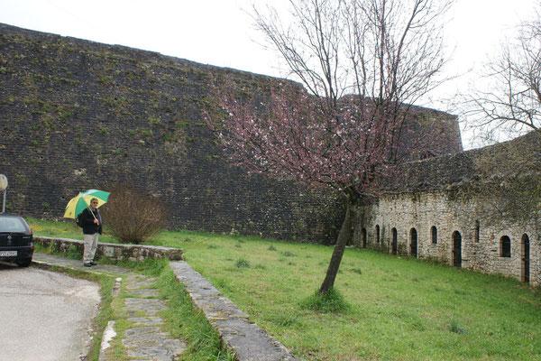 Die hohe Stadtmauer umschliesst vollständig die Altstadt