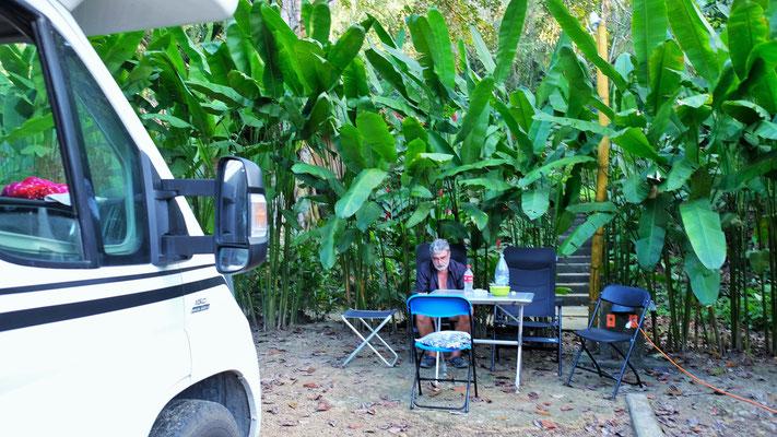 Unser Plätzchen in Palenque
