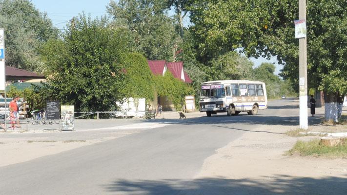 Auch der Bus fährt nach Vylkone