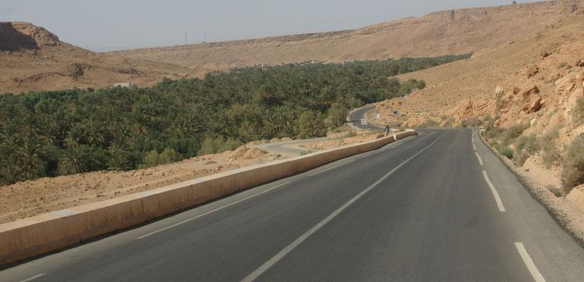 Oben braun und unten im Oued Ziz so grün, dass es fast in den Augen schmerzt.