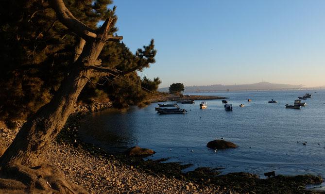 Die Fischerboote in der am Morgen windstillen Bucht