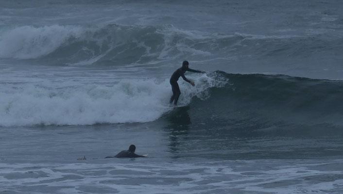 Keine Delfine, dafür Surfer.