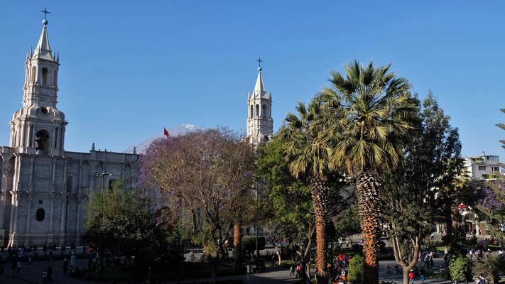 Ein letzter Blick auf die Kathedrale