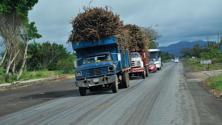 Prallgefüllte Lastwagen mit Zuckerrohr