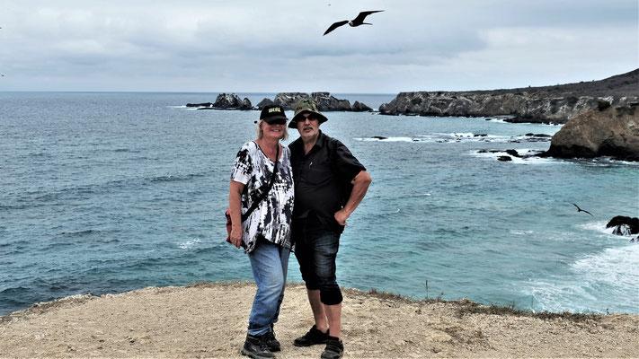 Die ganze Insel ist bevölkert von Tausenden von Fregattenvögeln