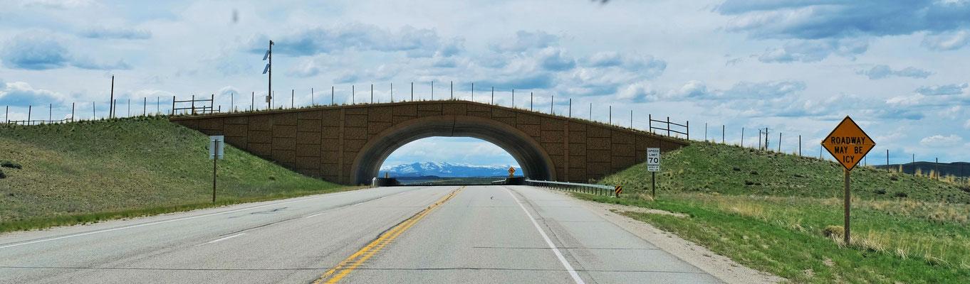 Mittels extra für sie erbauten Brücken