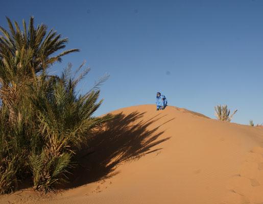Ali Baba auf den Dünen des Erg Chebbi