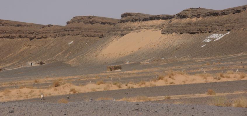 Die Verkaufsläden von Fossilien sind weithin sichtbar vor Erfoud angeschrieben