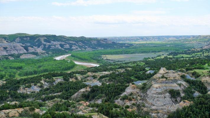 .... weite Sicht über den little Missouri River der sich durch den Baumwollwald schlängelt