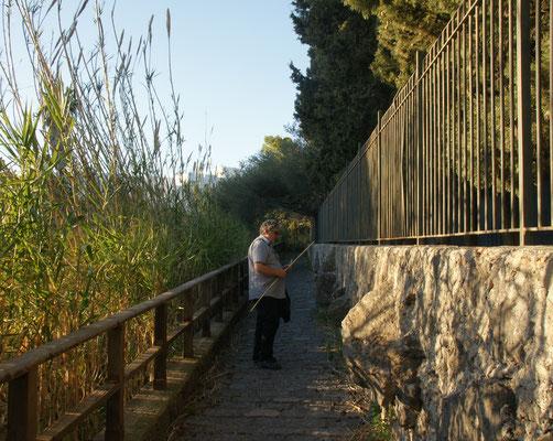 Alois findet Material für seine Flöten in Giardini-Naxos