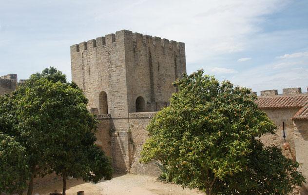 Zuoberst in der Festung