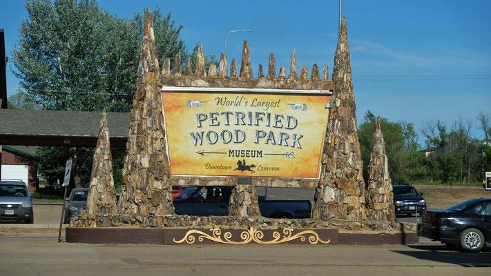 Dann gibt es daneben noch den versteinerten Wald Park...