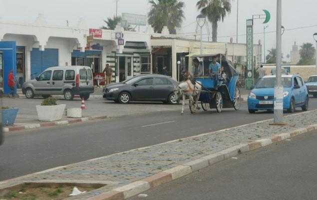Auch in Essaouira Pferdetaxi versus Kleintaxi