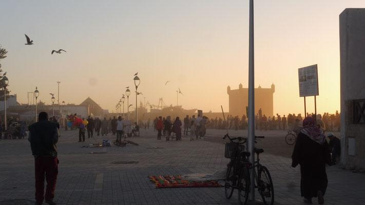 Alles wartet auf den Sonnenuntergang im Hafen von Essaouira
