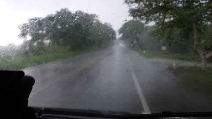 Ein Tropenregen und danach.....