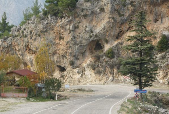 Zwar keine Bären, aber immerhin Höhlen