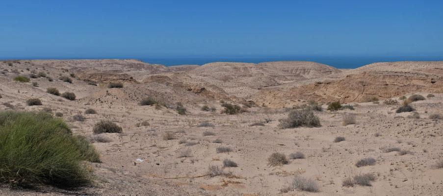 Wir sind in der Wüste......