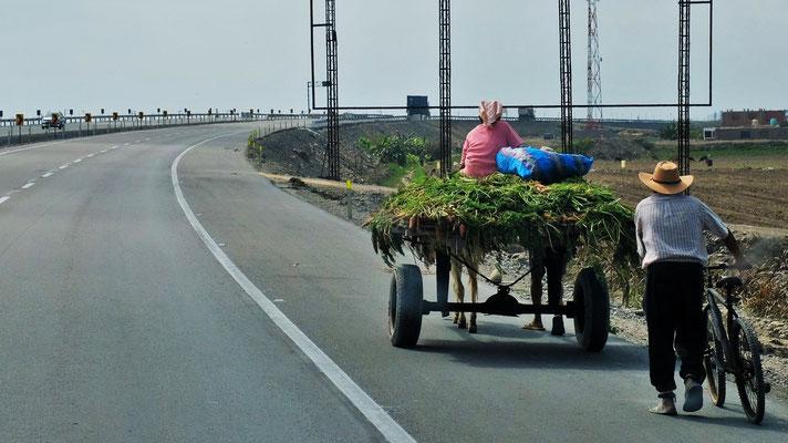 Auch sie fahren auf der Autopista