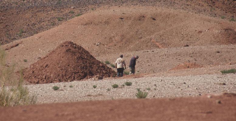 Assou zeigt Alois wo er noch mehr schöne Steine findet.