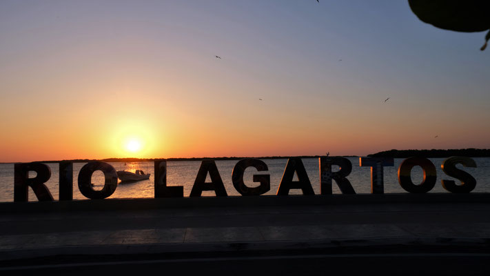 ....in Rio Lagartos