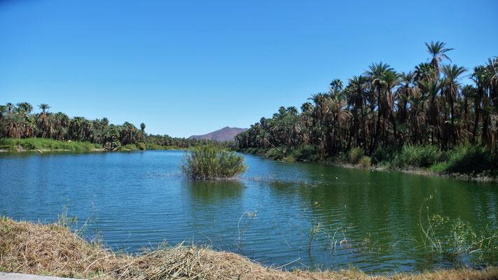 ... mit der Lagune
