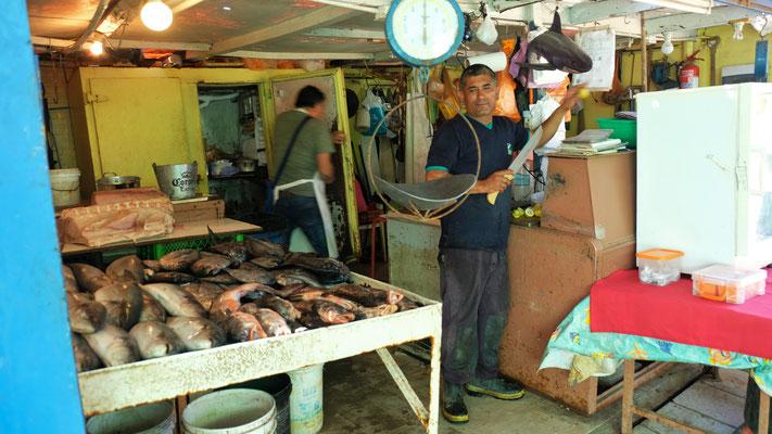 Wo ein Fischmarkt ist.......