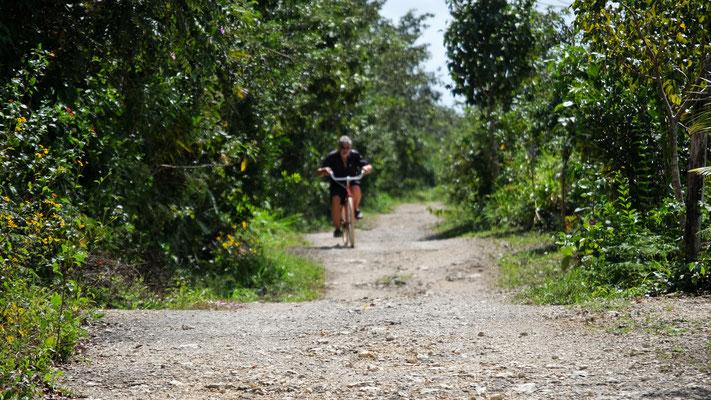 Auf unserem Campingplatz gibt es Räder, die wir für den halben Kilometer zur Cenote benützen können.
