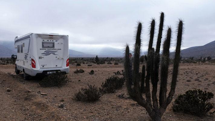 Unser Stellplatz mitten in der Wüste, gerade war die Sonne noch da.