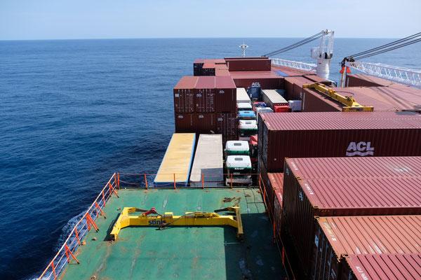 Der Fischreiher sitzt vorne auf dem Container....