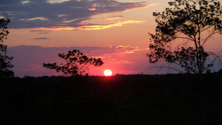 Viele Sonnenuntergänge haben wir in letzer Zeit beim Fahren beobachten können
