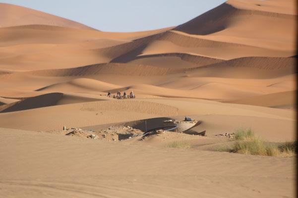 Morgens bereits die ersten Touristen mit Dromedaren unterwegs