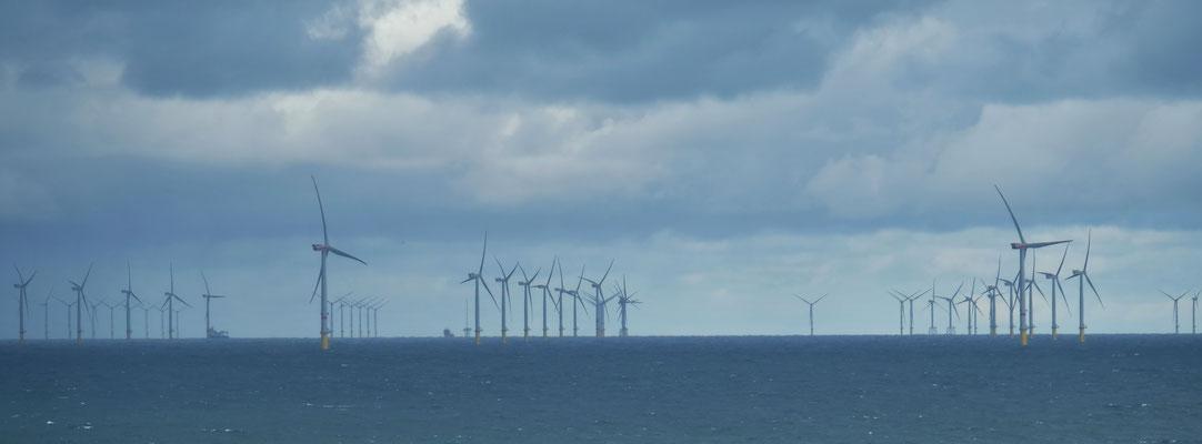 Vorbei an riesigen Windparks in der Nordsee