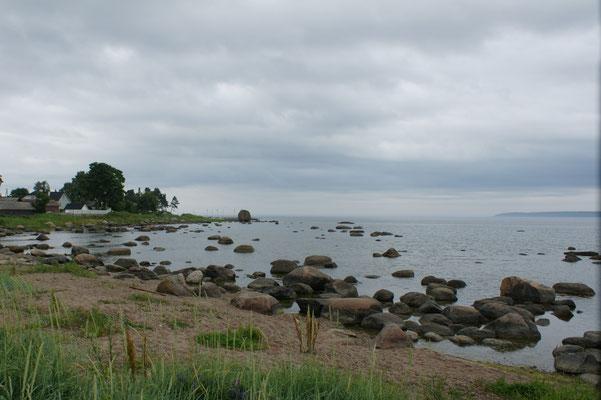 Viele Findlinge im Meer