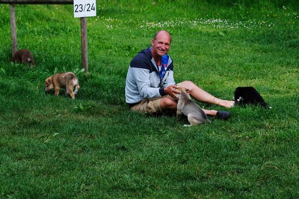 Rene spielt mit den jungen Hunden, derweil....