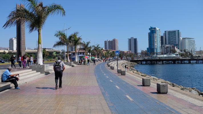 Beim Fischerhafen im Zentrum von Antofagasta und