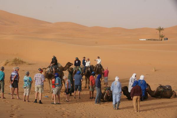 Die Holländer schwingen sich auf die Kamele hinter dem Hotel Haven la Chance am Erg Chebbi