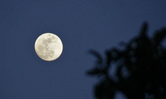 .....und auf der anderen Seite der Mond hallo.