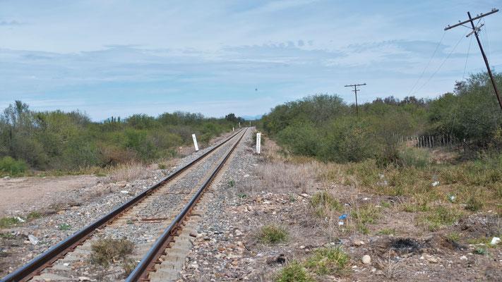 .... der El Chepe aus Mochito führen erstmal lange durch die Ebene