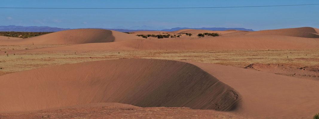 Die anderdünen, fast sahairisch