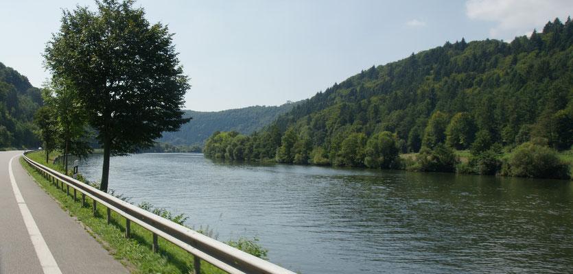Ziemlich lange können wir entlang des bewaldeten Neckars fahren.