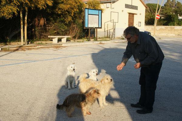 Alois der Hundeflüsterer