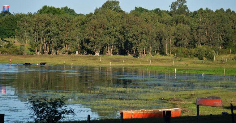 Abendstimmung am Lago Rincon del Bonete