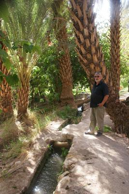 Die Kanäle in der Oase bringen das Wasser überall in die Gärten